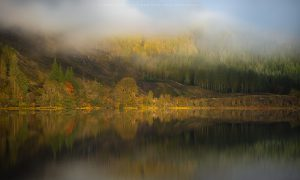 The banks of a Scottish loch during peak Autumn