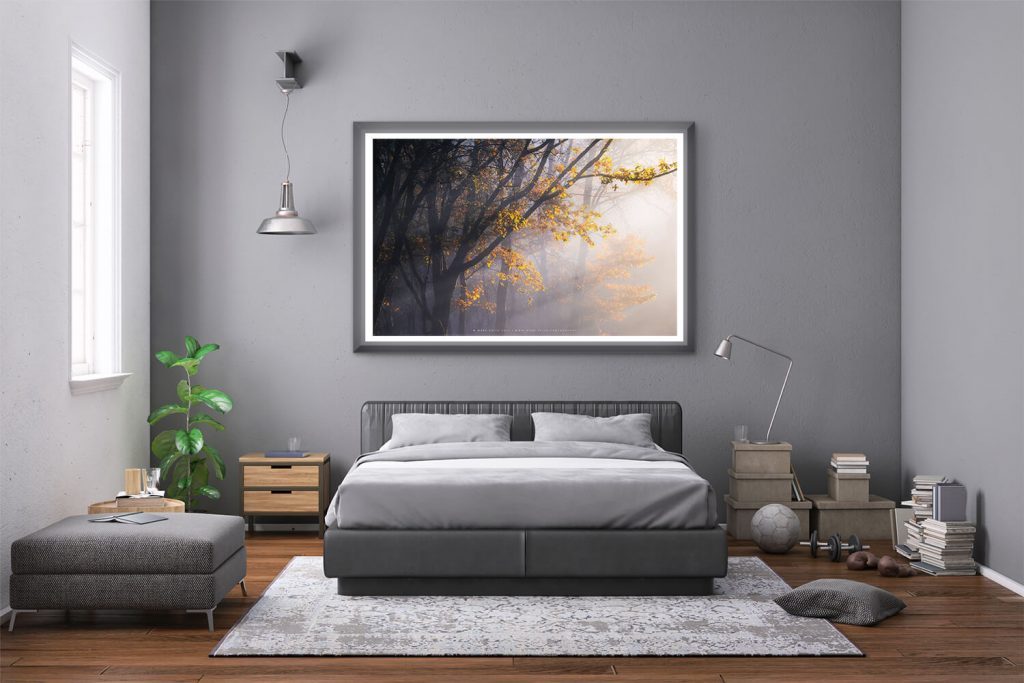 Room Mockup of Landscape Photography by Mark Price