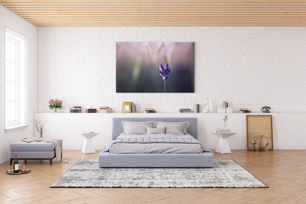 Somerset Blues Room Canvas by Mark Price Photography