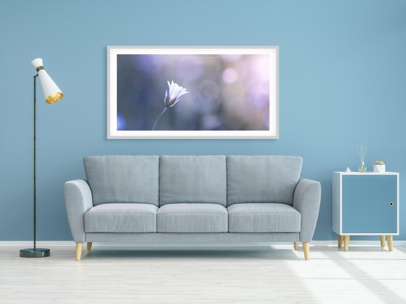 modern living room with Art print by Mark Price Photography