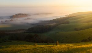 Golden sunrise light begins to warm up the landscape in late Autumn, Sussex