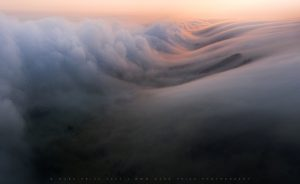 Quite incredible rolling fog and cloud on the South Downs, Sussex - March 2021