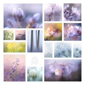 Various macro and ICM techniques combined to make a collage piece of macro landscape art
