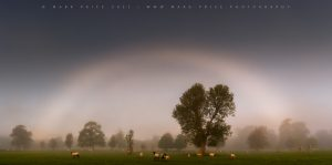 A rare white rainbow, or 'fogbow' over the Sussex landscape