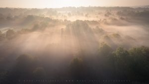 Intense light over the Sussex countryside in early summer