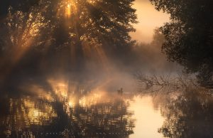 Glorious light and radiation mist across a lake in Sussex